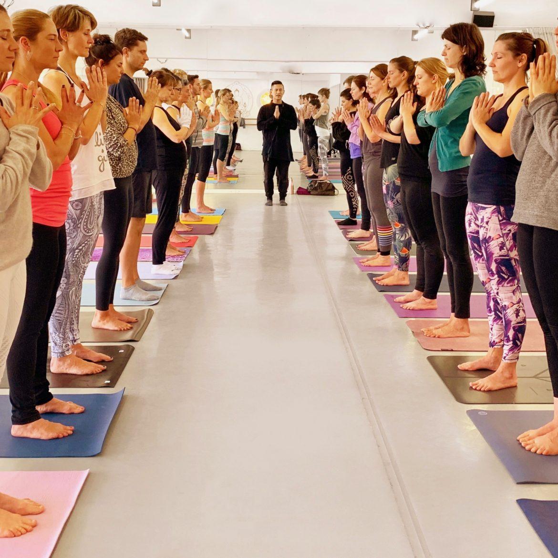 NOW-Yogalehrerausbildung 2019